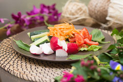 Salad with fresh tomato cheese, olive, radish. Appetizer. Healthy. Restaurant Royalty Free Stock Photography