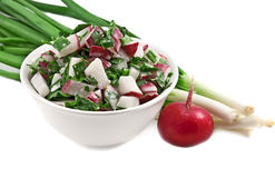 Salad from fresh vegetables Royalty Free Stock Photos