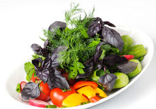 Salad with fresh vegetables Stock Photography