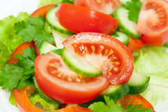 Salad of fresh vegetables Royalty Free Stock Photography