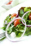 Salad of fresh vegetables. Royalty Free Stock Photo