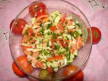 Salad of fresh vegetables in the salad bowl. royalty free stock photos