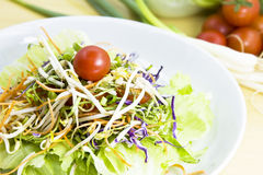 Salad with fresh vegetables - close-up. Healthy salad with fresh vegetables on table royalty free stock images
