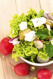 salad with fresh vegetables Stock Images