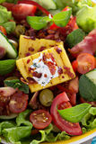 Salad with fresh vegetables, grilled polenta Stock Images