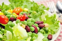 Salad. Fresh vegetarian green bean salad with cherry tomatoes Royalty Free Stock Photos