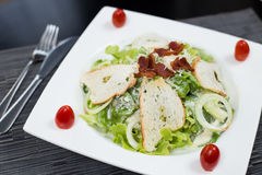 Salad fried bacon. With bread Stock Photography