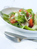 Salad From Vegetables Royalty Free Stock Photography