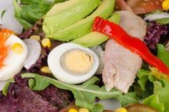 Salad full frame take Stock Photo