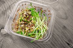 Salad of germinated seeds of flax pea lentils and other grains. Macrobiotic food concept stock image