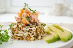 Salad of germinated seeds, trout and avocado. Macrobiotic food concept.  royalty free stock image