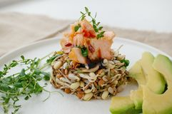 Salad of germinated seeds, trout and avocado. Macrobiotic food concept.  royalty free stock photos
