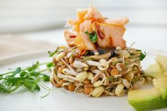 Salad of germinated seeds, trout and avocado. Macrobiotic food concept.  stock photos