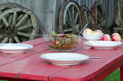 Salad glass dish and apples wooden homestead table Royalty Free Stock Photography