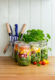 Salad in glass storage jars. Copy space. Stock Images