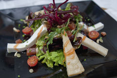 Salad goat cheese and tomato. Salad with goat cheese and fresh cherry tomato on black ceramic square plate Stock Photos