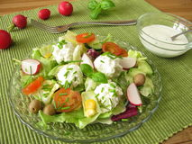 Salad with goat cream cheese Royalty Free Stock Photography