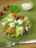 Salad with goat cream cheese Royalty Free Stock Image