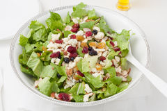 Salad with gorgonzola cheese and dry berries in white bowl Stock Images