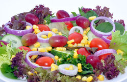 Salad with Grapes Royalty Free Stock Photos