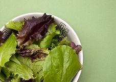 Salad on a Green Background Royalty Free Stock Photos