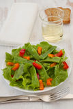 Salad with green beans Royalty Free Stock Photos