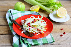 Salad with green celery Stock Images