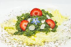 Salad of green kale Royalty Free Stock Images
