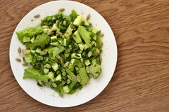 Salad of green vegetables Stock Photography