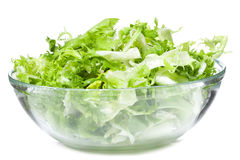 Salad with greens Stock Images