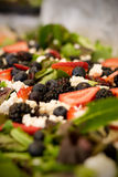 Salad of greens. A salad of greens, strawberries, grapes, raspberries and feta cheese Royalty Free Stock Photo