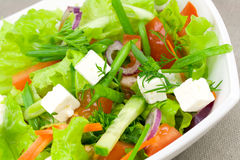 Salad with greens Royalty Free Stock Images