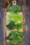 Salad greens and lettuce closeup on a wooden board and table Stock Image