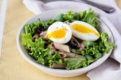 Salad with greens, pasta, tuna and egg Royalty Free Stock Photography