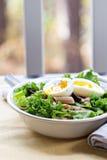 Salad with greens, pasta, tuna and egg. Salad with greens, pasta, tuna and boiled egg Stock Images