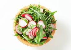 Salad greens with sliced radish Royalty Free Stock Photo