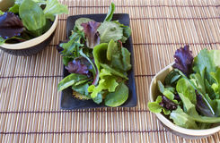 Salad Greens and Spinach Royalty Free Stock Images