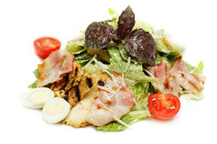 Salad with grilled chicken Royalty Free Stock Image