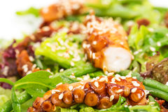 Salad with grilled octopus and dried tomatoes. Royalty Free Stock Photos