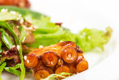 Salad with grilled octopus and dried tomatoes. Royalty Free Stock Image