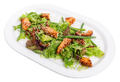 Salad with grilled octopus and dried tomatoes. Stock Image