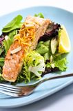 Salad with grilled salmon. Green salad with grilled salmon fillet and lemon Royalty Free Stock Photo