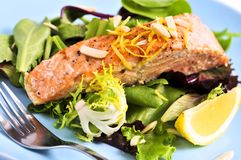 Salad with grilled salmon. Green salad with grilled salmon fillet and lemon Stock Images