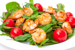 Salad with Grilled Shrimp and Tomatoes Stock Photo