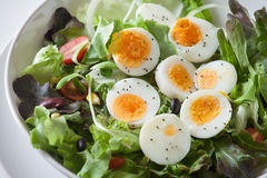 Salad, healthy food. Healthy food for your good life Royalty Free Stock Image