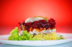 Salad with herring and boiled vegetables Stock Image