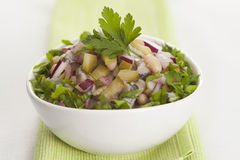 Salad with herring, red onion, white bean and pickled cucumber Stock Photos