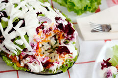 Salad with herring and vegetables Royalty Free Stock Images