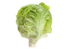 Salad iceberg head Royalty Free Stock Image