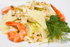 Salad with iceberg lettuce and shrimp Royalty Free Stock Photography
